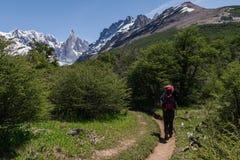 Cerro Torre avec la personne de trekking Images stock