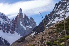 Cerro Torre avec des arbres dans le premier plan Image libre de droits