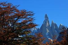 Cerro Torre mountain in autumn colors. Los Glaciares National park, Argentina Stock Image