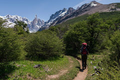 Cerro Torre with trekking person Stock Images