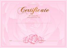 Certificado, diploma da conclusão (molde do projeto de Rosa, fundo da flor) com floral, teste padrão, beira, quadro Fotos de Stock Royalty Free