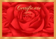 Certificado, diploma de la realización (plantilla del diseño de Rose, fondo de la flor) con floral, modelo, frontera, marco Imagen de archivo