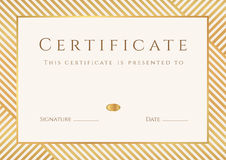 Certificado, plantilla del diploma. Modelo del premio del oro Imagen de archivo libre de regalías