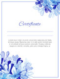 Certificate. Stock Photos