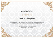 Certificate Design Template. Stock Photography