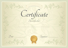 Certificate / Diploma background (template). Certificate of completion (template or sample background) with floral pattern, green frame and gold medal (insignia royalty free illustration