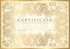 Certificate, Diploma of completion golden design template, white background Royalty Free Stock Photos