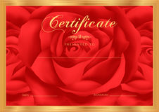 Certificate, Diploma of completion (Rose design template, flower background) with floral, pattern, border, frame. Stock Image