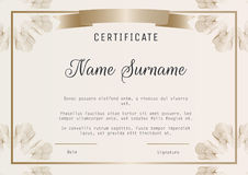 Certificate diploma template vector with guilloches in corners. Certificate diploma template vector with gold guilloches in corners and ribbon banner Royalty Free Stock Images