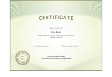 Certificate form. Vector illustration showing certificate form Royalty Free Stock Photo