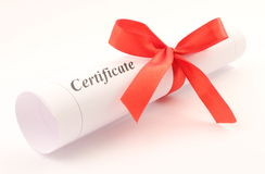 Certificate rolled with bow Stock Image