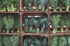 Certifique-se comer seus verdes fotografia de stock