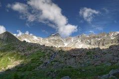 Cervandone di Monte Fotografia Stock
