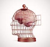 Cerveau à l'intérieur d'une cage Photo libre de droits