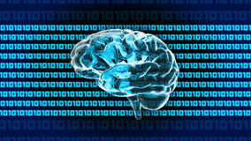 Cerveau 1010 d'ordinateur Images stock