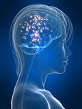 Cerveau actif illustration libre de droits