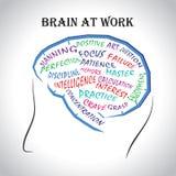 Cerveau au travail photographie stock