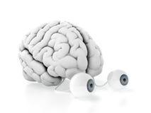 Cerveau avec des yeux illustration de vecteur