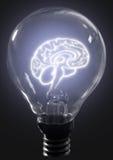cerveau d'ampoule images libres de droits