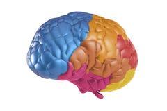 Cerveau de créativité illustration stock