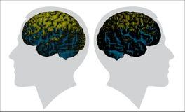 Cerveau de Digital en couleurs Photographie stock