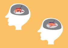 Cerveau dormant à l'intérieur de la tête Image libre de droits