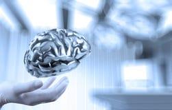 Cerveau en métal d'exposition de main de neurologue de docteur image libre de droits