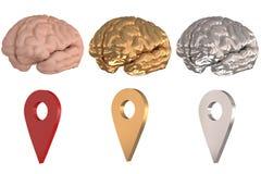 Cerveau et argent local d'or de l'icône 3D Photographie stock