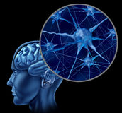 Cerveau humain avec la fin vers le haut des neurones actifs Image libre de droits