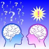 Cerveau mâle contre le cerveau femelle Photos libres de droits