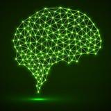 Cerveau polygonal abstrait avec les points et les lignes rougeoyants Photos stock