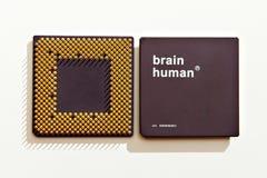 Cerveau-processeur humain Photographie stock