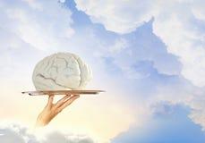 Cerveau sur le plateau en métal Photo stock
