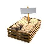Cerveaux à vendre Image libre de droits