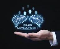 Cerveaux avec des flèches Intelligence artificielle et développement concentrés photos libres de droits