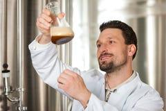 Cervecero de la cerveza en su cervecería que examina fotos de archivo