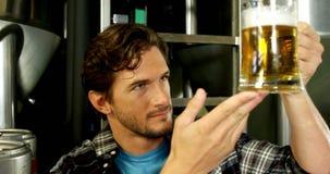 Cervecero que comprueba la pinta de la cerveza 4k metrajes