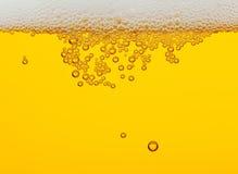 Cerveja Foto de Stock Royalty Free