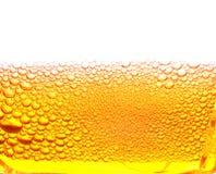 Cerveja Foto de Stock