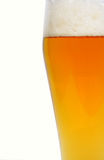 Cerveja Barmy Fotos de Stock Royalty Free