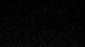 A cerveja borbulha metragem do close-up 4K 2160p UltraHD da animação do movimento lento - cor e bolhas douradas da cerveja no vid ilustração royalty free