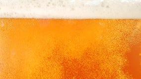 A cerveja clara é derramada dentro um vidro closeup Movimento lento vídeos de arquivo