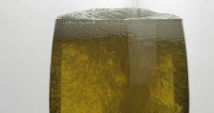 Cerveja clara dourada fria de derramamento em um vidro Cerveja do of?cio que faz bolhas e espuma video estoque