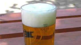 Cerveja clara em um vidro vídeos de arquivo