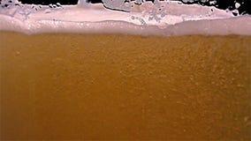 Cerveja clara no vidro, movimento lento vídeos de arquivo