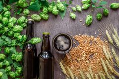 Cerveja da garrafa e do vidro com trigo e lúpulos como ingredientes da fabricação de cerveja na área de espaço da vista superior  Imagem de Stock
