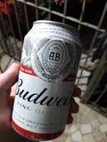Cerveja de Cerveza Budweiser Fotografia de Stock Royalty Free