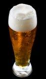 Cerveja de Chiled fotos de stock