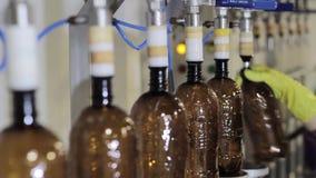 Cerveja de engarrafamento na fábrica da cerveja video estoque