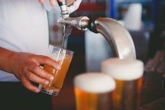 Cerveja de esboço Imagem de Stock Royalty Free